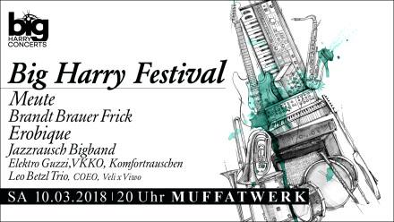 171117-Webflyer-BIG_HARRY-festival-1920x1080